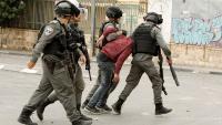 الاحتلال يعتقل مواطنين من مخيم الفارعة