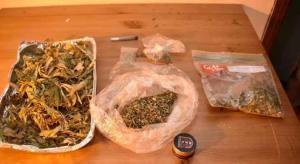 بالصور: القبض على أردني يزرع الماريجوانا بمنزله بالكويت