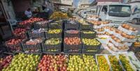 بحث فتح الطريق البرية أمام المنتجات الزراعية اللبنانية