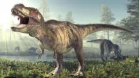 الكشف عن آخر وجبة لديناصور قبل 110 ملايين عام