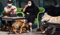 السعودية تفتتح أول مقهى لعشاق الكلاب
