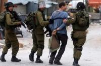 الاحتلال يعتقل 16 فلسطينياً