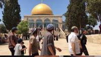 اقتحامات جديدة في المسجد الأقصى