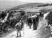العفو الدولية: 71 عامًا من الاختناق
