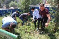 طلبة جامعة البترا يقدمون أعمال تطوعية في مركز زها الثقافي