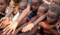 المجاعة تهدد 124 مليون شخص بسبب الحروب والجفاف
