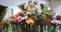 عمان تتزين بمعرض للأزهار