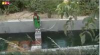 بالفيديو ..  لحظة سقوط مذيعة داخل حوض مياه!