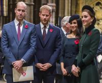 الأمير وليام قلق على شقيقه هاري