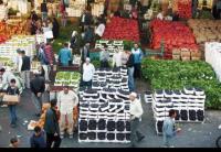 550 طنا واردات سوق العارضة للخضار