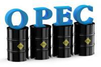 """""""أوبك"""" تتوقع استقرار سوق النفط في 2017"""