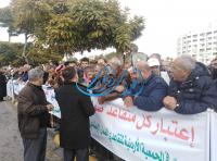 متقاعدو الضمان يعتصمون أمام النواب للمطالبة برفع رواتبهم - صور و فيديو