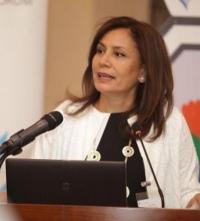 الزواتي: 99% نسبة تغطية الكهرباء في الأردن