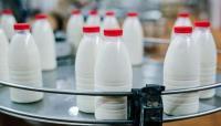 مخاطر التخلي عن تناول منتجات الألبان