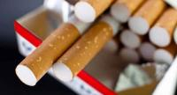 رفع اسعار التبغ بنسبة ٢٥% في مصر