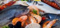 ما علاقة السمك بزيادة الرغبة الجنسية؟