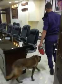 أين دخلت الكلاب البوليسية قبيل لقاء الرزاز؟