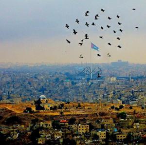 عمان بعدسة أحداث اليوم