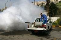أمانة عمان تنفذ 1286حملة لمكافحة ناقلات الأمراض