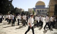 عشرات المستوطنين اليهود يقتحمون الاقصى