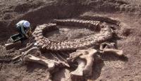 عاصفة تكشف عن ديناصور عاش قبل 130 مليون سنة
