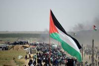 """غزة تستعد لجمعة """"الشباب الفلسطيني"""""""