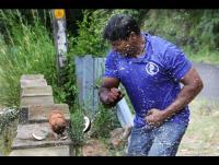 هندي يكسر(124)جوزة هند بيديه العاريتين -فيديو