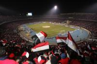 لماذا يذبح المصريون العجول في الملاعب الرياضية ؟