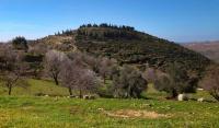 الاحتلال يهدم خيمتين في اللبن الشرقية