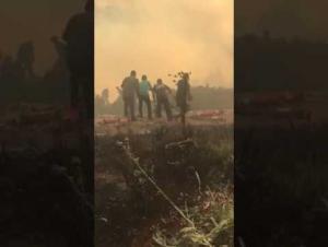 الملك عبد الله الثاني يشارك في اخماد حريق الكمالية