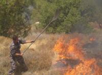 إخماد حريق بمساحة 100 دونم في عمان