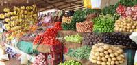 مزارعون: دمشق ترفض استیراد أي صنف من الخضار الأردنیة