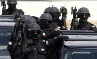 الأمن يحبط تهريب مخدرات داخل نافورة - صور