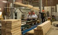استيتية: تشغيل الحد الادنى من عمالة المصانع لا يكفي