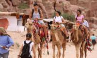 3.2 مليار دينار ارتفاع الدخل السياحي