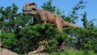 الأرض بدأت عصراً جديداً بعد انقراض الديناصورات