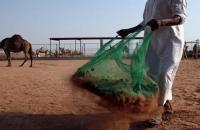 دولة عربية تستخدم روث الإبل كوقود لإنتاج الإسمنت