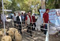 مواقع بيع الأضاحي في عمان - اسماء