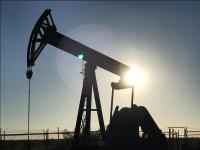 النفط مستقر بعد تراجع كبير في المخزونات الأمريكية