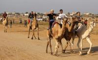 إقامة أول سباق للهجن في فلسطين على أرض مطار-صور