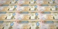 ارتفاع موجودات صندوق استثمار الضمان نصف مليار دينار