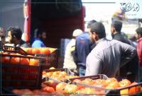 2727 طن خضار وفاكهة واردة للسوق المركزي