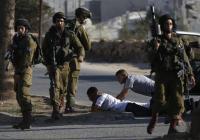 الاحتلال يعتقل 8 فلسطينيين في الضفة