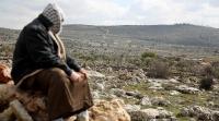 أميركا: صفقة القرن لن تمنح أرض من سيناء للفلسطينيين