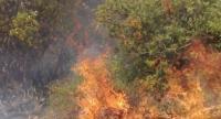 اخماد حريق أعشاب جافة في إربد