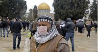 فلسطين تسجل 10 إصابات جديدة بكورونا