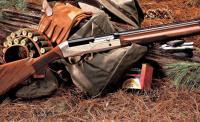 فقدان بندقيتي صيد من مستودعات بلدية