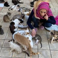 مغربية تحول منزلها إلى مأوى قطط بوصفهم أبناءها
