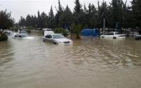 غرق المركبات ..  هل تعوّض شركات التأمين المتضررين؟