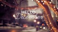 مع بداية ديسمبر ..  نشطاء يتمنون نهاية عام آمنة